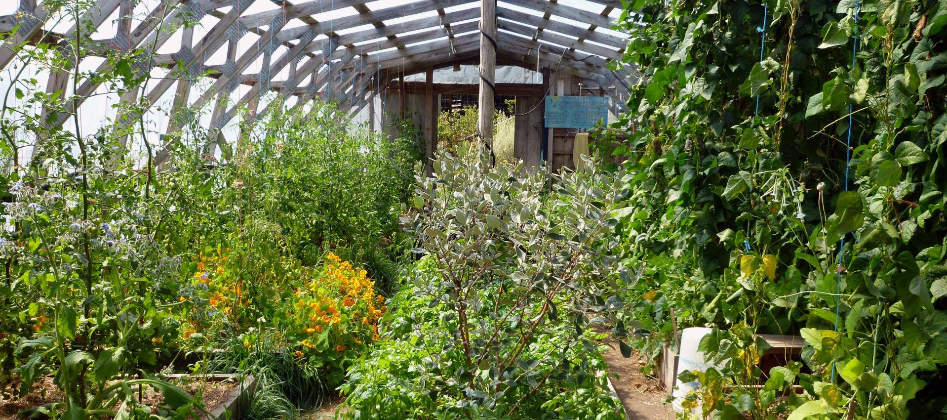 permaculture pays basque