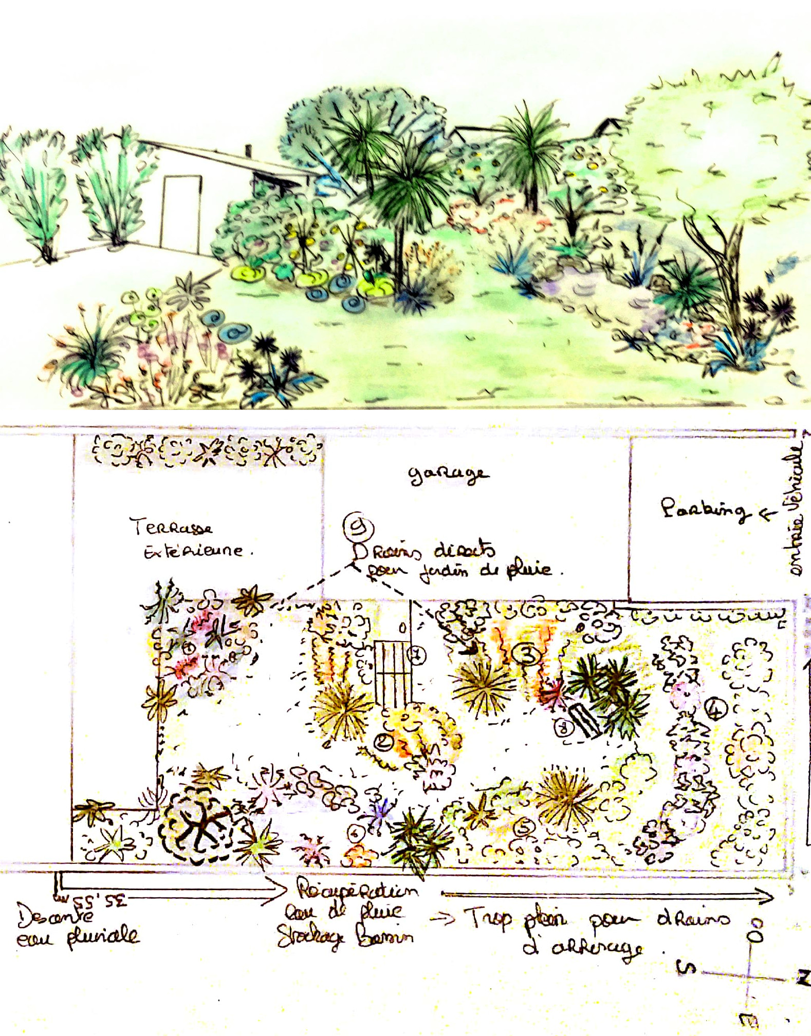 paysagisme permaculture
