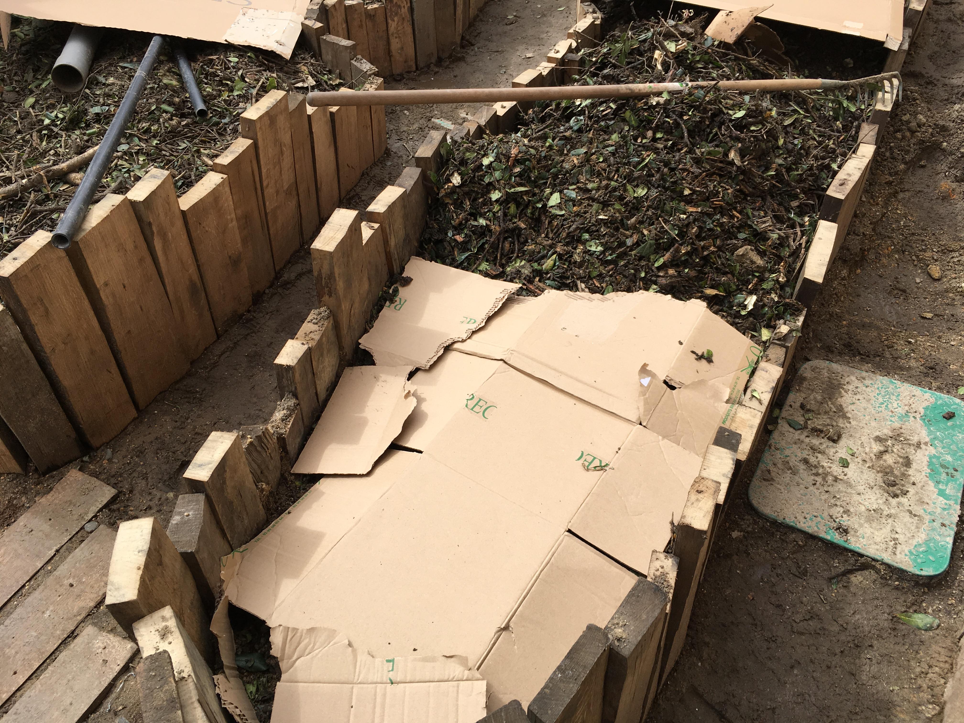permaculture paillage carton lasagne butte